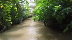 River boat trip Mekong Delta canal Vietnam stock footage