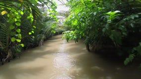 River boat trip Mekong Delta canal Vietnam. Rainforest stock footage