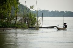 River Boat on Water Gliding through with Boatman, with another hidden Behind Bamboos stock image
