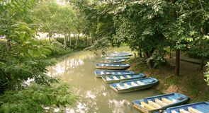 River and boats. A group of river boat in Thailand Royalty Free Stock Photography