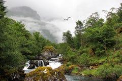 River Bondhuselva flowing out of lake Bondhus in Folgefonna national park, Hordaland county, Norway.  royalty free stock photos