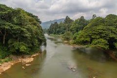 River in the botanical Garden of Peradeniya Royalty Free Stock Image