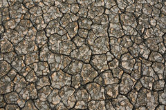 River bottom dried up Royalty Free Stock Photo
