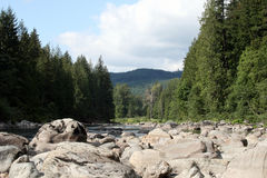 River and Boulders. River runs low in August, surrounded by boulders and evergreens Stock Image