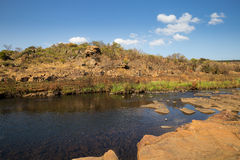 River at Bourke Luck Potholes, Blyde River Canyon, South Africa Royalty Free Stock Image