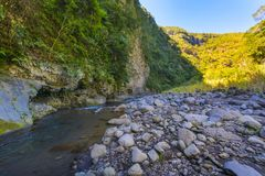 River at Bras de la Plaine at Reunion Island. River during a sunny day at Bras de la Plaine at Reunion Island Stock Photography