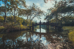 River bridge in autumn park Stock Image