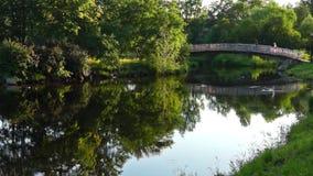 River bridge in city park in summer stock video