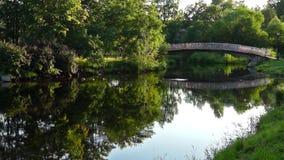 River bridge in park in summer stock video