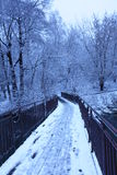 River Bridge in winter. Winter, dark, beautiful landscape, fresh snow around, winter bridge, the road to climb Stock Images