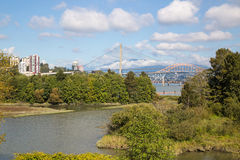 River, bridges and trees Stock Image