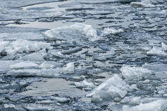 River with broken ice Royalty Free Stock Photography