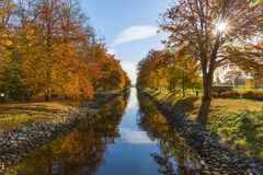 River Between Brown Leafed Trees during Daytime Stock Image