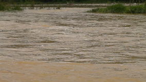 River burst its banks. Muddy water stock footage