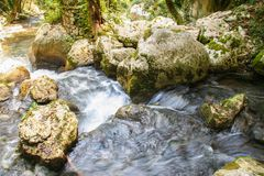 River Bussento and wwf Oasis. Beautiful environment around the river Bussento resurgence, a natural reserve   in Cilento national park Royalty Free Stock Images