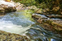 River Bussento and wwf Oasis. Beautiful environment around the river Bussento resurgence, a natural reserve   in Cilento national park Stock Photo