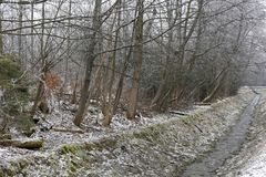 Winter view of the brook at the forest Royalty Free Stock Photo