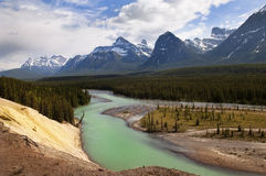 River in Canadian Rockies Royalty Free Stock Photos