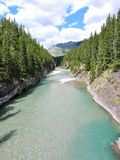 River in Canadian Rockies Royalty Free Stock Images