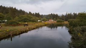 River in cannon beach Royalty Free Stock Image
