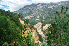 River canyon, green forest mountains, nature landscape Stock Photos