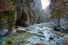 River in a canyon Stock Images