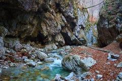 River in a canyon Stock Photos