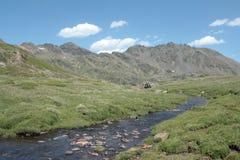 River in Capcir , Pyrenees orientales Royalty Free Stock Photos