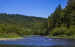 River at the Carpathian forest Stock Images