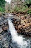 River in carpathian mountains stock photo