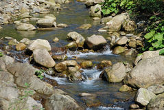 River on Carpathian mountains Royalty Free Stock Image