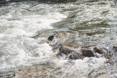 River in the Carpathian mountains Stock Photo