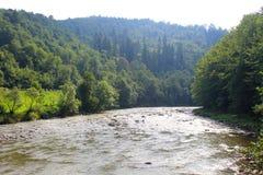 River in Carpathian mountains Royalty Free Stock Photo