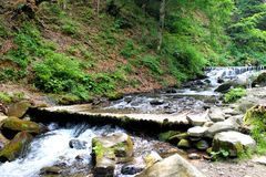 River in Carpathian mountains Stock Images