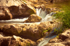 River cascades. Small  river cascades summer day Stock Images