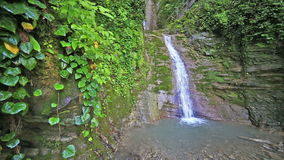 River in Caucasus mountains forest, waterfall near. River in Caucasus mountains forest waterfall near lake Ritsa, Abkhazia, Georgia stock footage