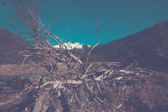 River Cauquenes and Tronador volcano Royalty Free Stock Image