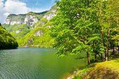 River Cesino Royalty Free Stock Photography