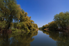 River channel in the Danube Delta Stock Photo