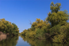 River channel in the Danube Delta Royalty Free Stock Photos