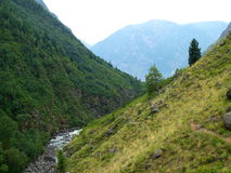 The river Chulcha, mountain Altai Stock Images