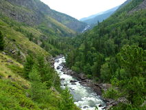 The river Chulcha, mountain Altai Royalty Free Stock Image
