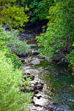 River Cikola Stock Photos