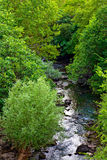 River Cikola Stock Photography