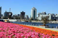 River and city area in Tianjin, China Royalty Free Stock Photo