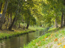 River in city park Stock Photography