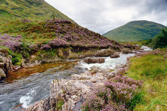 The River Coe Royalty Free Stock Photo