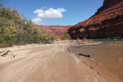 The river Colorado Stock Images