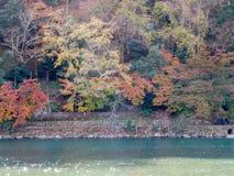 River in autumn in Arashiyama, Japan. River with colorful leaves in autumn season in Arashiyama region, Kyoto, Japan Stock Photography