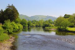 River Conway, in summer, low water Stock Photography